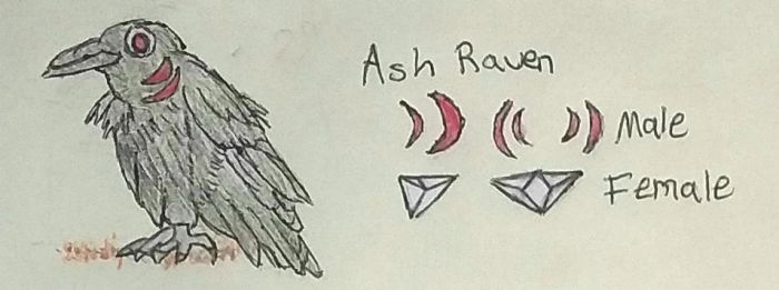 Beasts of Insanity: Ash Raven Entry by R-Doll