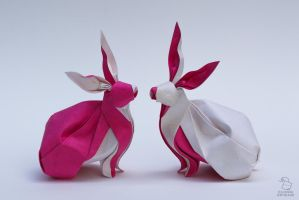 Twins rabbits by CuongOrigami