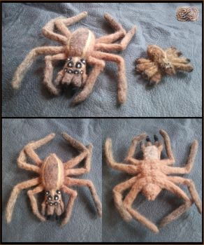Felted Wool Wolf Spiders by CopperCentipede