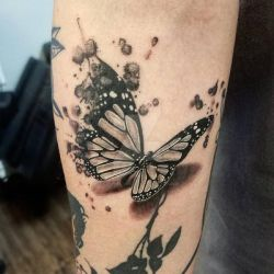 TATTOO Butterfly Watercolor by SoulVibrationArt