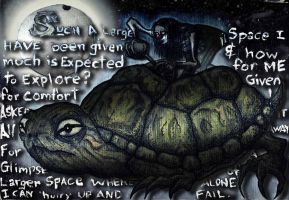 SpaceTurtle by SaintHectic