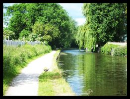 Chesterfield Canal 3 by pdutogepi