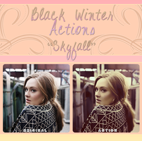 BlackxWinter Actions - Skyfall by blackxwinter