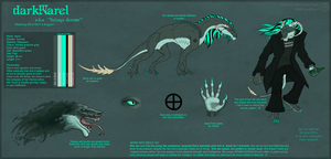 darkNarel reference sheet 2009 by darkNarel