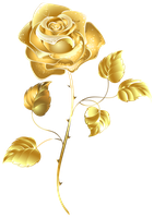 Golden Rose by Life-Is-Art-88