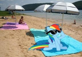 Chilling at the beach by snakeman1992