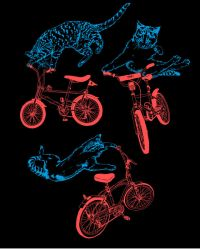 CATS. ON BIKES. by rockst3ady