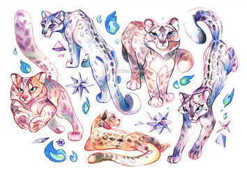 Snow leopards by mariposa-nocturna