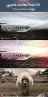 Light Leaks Pack 01 - Lightroom Presets by khaledzz9