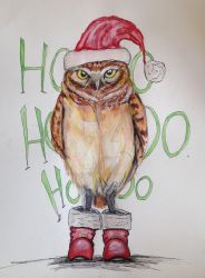 Merry Christmas to Owl.... by DreamingofDarkhorses