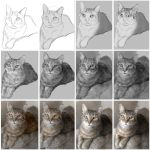 Photo realism exercise: Digitally painting a cat. by chrisscalf