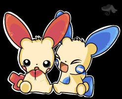 Minun and Plusle