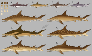 Tusked Shark: Colour/Marking Designs 2 by Atropicus
