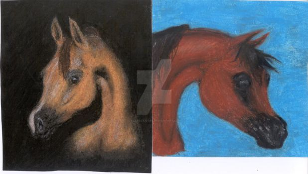 Arabians- Pastel Study by ClearCanvas