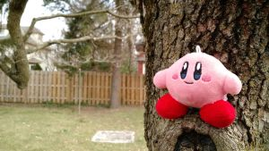 Kirby in the tree by TheCGly