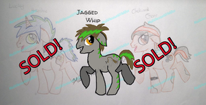 Stallion adopts UPDATED| CLOSED| by MadWhovianWithABox