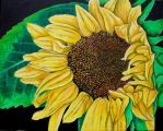 Sunflower Show by azzadawn