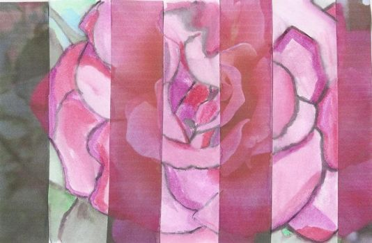 A Mixed Rose by Artemis-Cullen