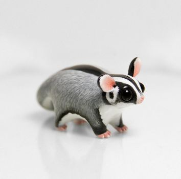 Sugar Glider by RamalamaCreatures