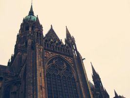 Cathedral in France by Amersss