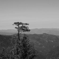 Americas: :lonely on the top by Ilharess
