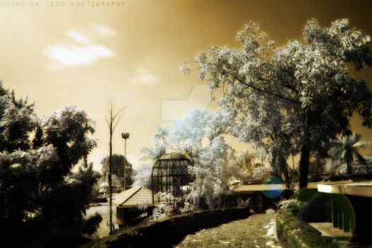 Passage_2 by smuglord