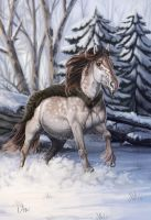 -= Com: Winter time =- by Naia-Art