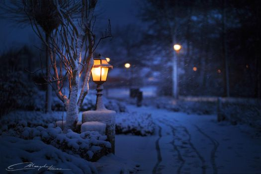 In bright white snow, when everyone sleeps by MaaykeKlaver