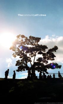 The community of the tree by Jucaro
