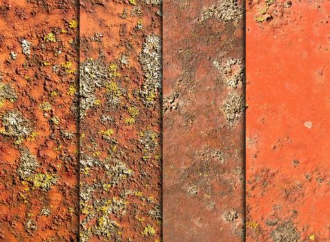 Rust, Moss, And Metal Textures by sdwhaven