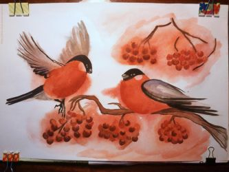 Bullfinches by rina-nova