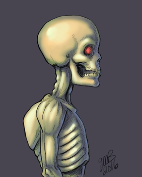 SkellyWelly by Mondracon