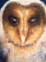 Owl by TheArtistAlicia