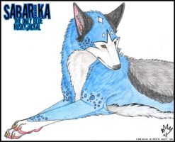 Sabarika - Coloured Pencils by Triazzy