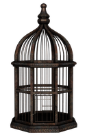 UNRESTRICTED - Rusty Birdcage Render by frozenstocks