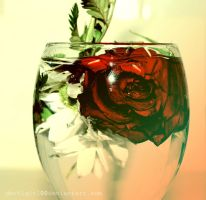 rose and flowers in water by DevilGirl00