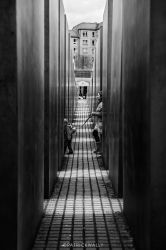 leashed by PatrickWally