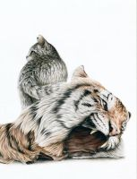 I LOVE FUR #2 by Tiefenbacher