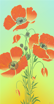 Giant-poppies by Rondo2009