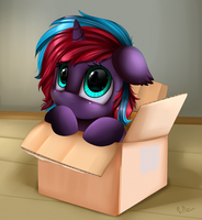 Comm: Box by pridark
