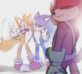 Sonic Tails and Rookie  by PiRoG-Art