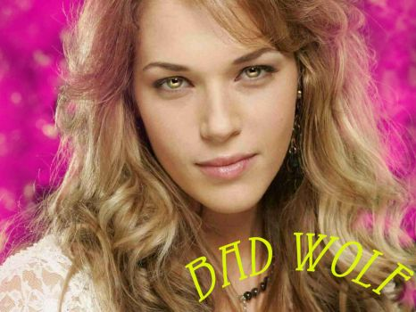 Slowly Losing You Fanfic BAD WOLF Amanda Righetti by RoseBadWolfTyler