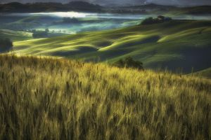 Dawn over the Val d'Orcia by CitizenFresh