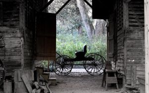 Rosedown Barn and Carriage by SalemCat