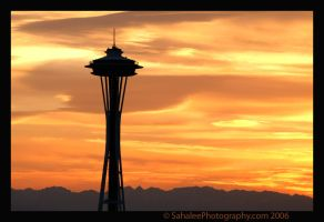 Space Needle by rayt