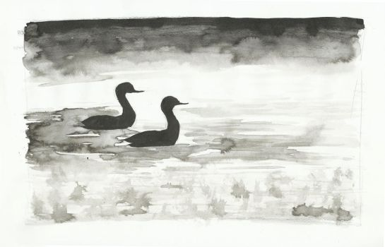 Inktober 2017 Day 20: Grebes on a misty morning by small-light