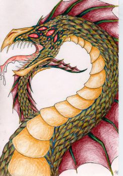 Land dragon 1 aka Draco by The-original-ninja-c