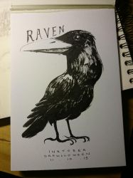Inktober feat. Drawlloween #11 : RAVEN by Myev07