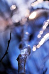 Abstract winter by busangane