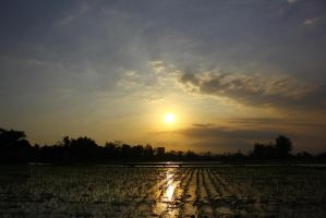 sunset sky by andhikazanuar